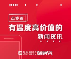 中国铁矿企业调查报告